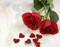 爱的玫瑰花瓣