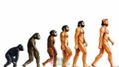 达尔文到底摧毁了什么?