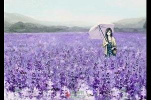 北堂种萱草,花开不见还