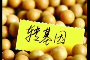 崔永元的反转基因生意让中国农业错失良机