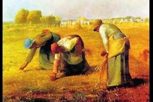 拾穗者和福利经济学