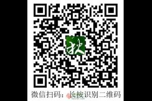 献爱心:帮助雨枫轩