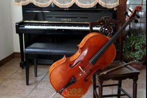 爱情和低音提琴