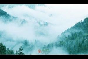 瘦雨九峰山,忆一段旧时光