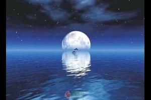 漂浮的月光