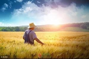 中国农民幸福吗