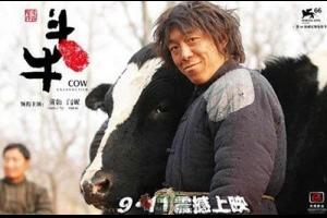 《斗牛》,被严重低估的一部抗战题材电影