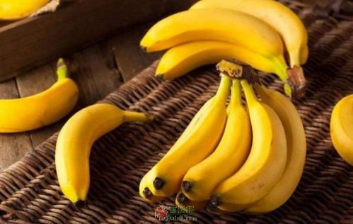 香蕉里的爱与恨