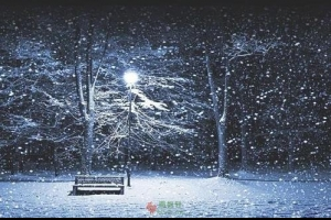 落在父亲生命中的雪