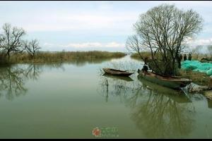 念人:故乡的小船(散文)