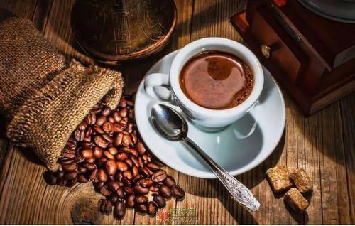一杯咖啡中拾到的宝石