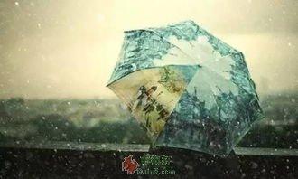 打蓝雨伞的姑娘