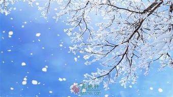 大雪纷飞的那一天