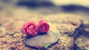 爱是最好的创可贴