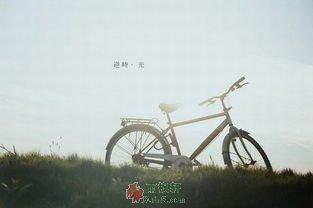 自行车上的亲情