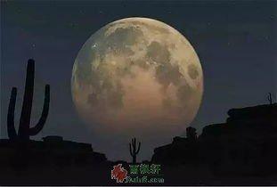 毛乌素沙漠的月亮