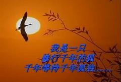 天堂有没有鸟
