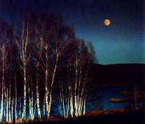 那夜,那月